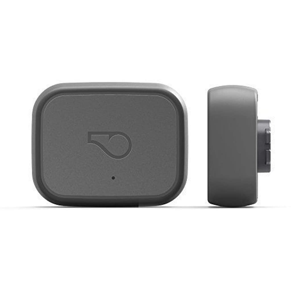 Whistle 100-04203-00 Go Explore/The Ultimate Health + Location Tracker for Pets