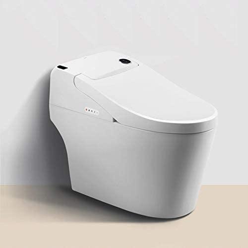 Euroto One-Piece Dual Flush Toilet